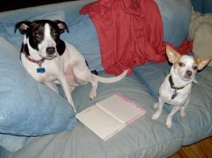 Canine Book Club