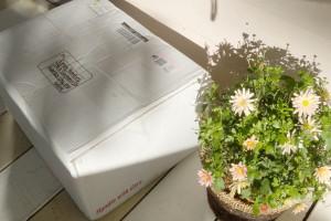 A package pour moi?!?!? Non!